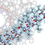 Biomaterial Chemistry