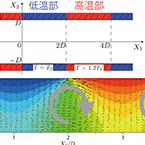 Molecular Fluid Dynamics