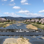 River System Engineering and Management