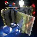 分子流体力学